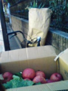 リンゴのように