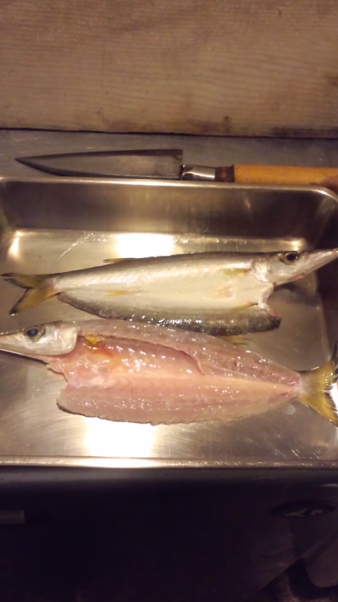 キトキト天然地魚